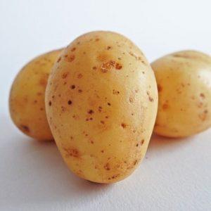 Ets Maternaud - pomme de terre